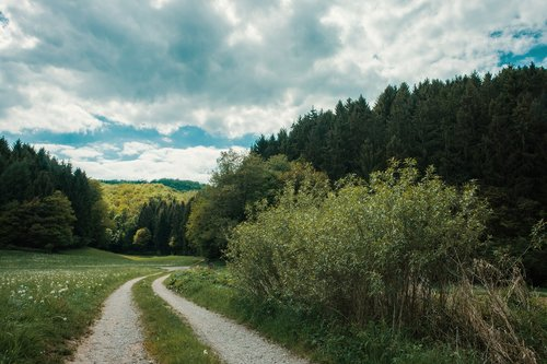 pobūdį, krūmas, toli, žvyruotas, žvyras, kraštovaizdis, augalų, debesys, medis, vaizdingas, žalias, mėlyna, dangus