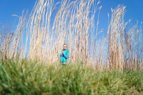 gamta,grūdai,poilsis,taika,laimė,poilsis,laukas,kūrybingas,fonas,scena,atsipalaiduoti,žolė,Pauzė