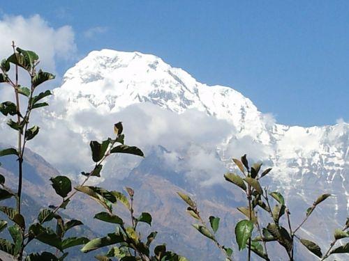 Nepalas,sekti,Annapurna