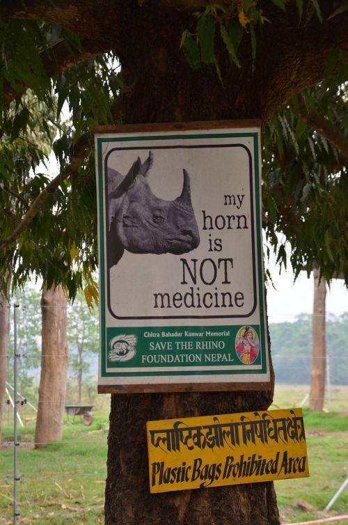 Nepalas,chitwan,gamta,Rhino,brakonieriai,išsaugojimas,gresia pavojus