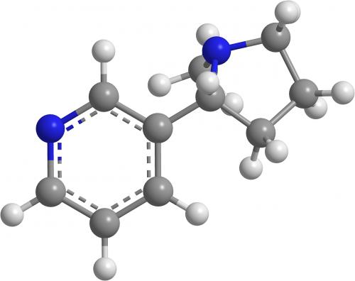 nikotinas,molekulinė chemija,organinė chemija,3d,neurotransmiteris