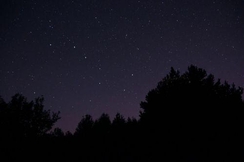 naktis,dangus,žvaigždės,ursa major,erdvė,žvaigždės nakties danguje