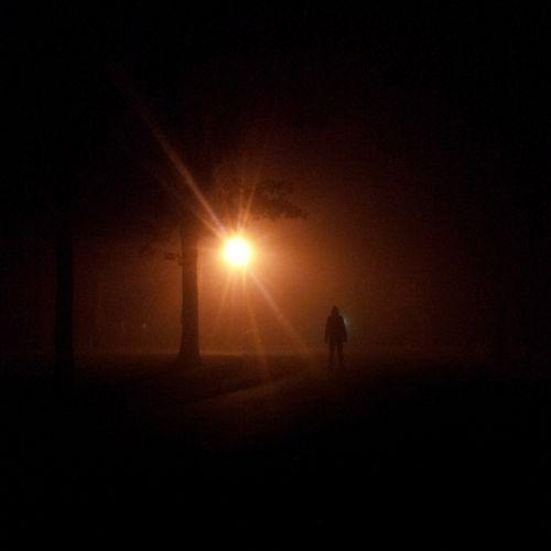 naktis,persekiotojas,asmuo,baugus,slėpti,šviesa,baisu,žmonės,siluetas,mįslingas,miręs,Zombie,regėjimas,košmaras,Elmstreet