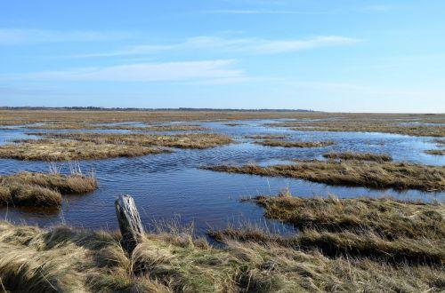 Šiaurės jūra,wadden jūra,Nordfriesland,vatai,pasaulio paveldo jūra,Nacionalinis parkas,kranto,st peter obi