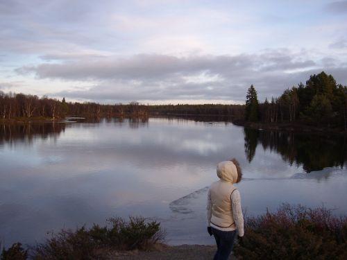 Norvegija, Natūralus, Ežeras, Kraštovaizdis, Pelkė, Tyla, Veidrodis, Ro, Žiema