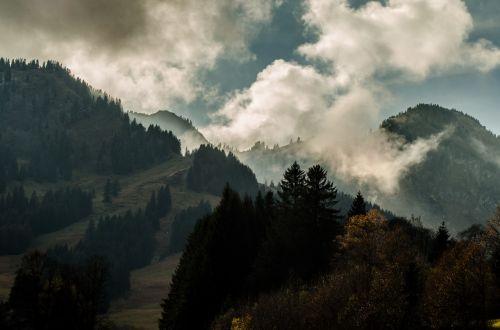 lapkritis,nuotaika,niūrus,kraštovaizdis,debesys,rūkas,kalnai,medis,spygliuočių,Allgäu