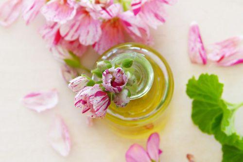 aliejus,geranium,lapai,gėlės,eteriniai aliejai,kvepalai,į sveikatą,aromatas,aromaterapija,rožinis,pelargoniai,gamta,bio,žinoma,kosmetika,grožis,priežiūra,kūno priežiūra,oda,odos priežiūra,gamyba,Sezamų aliejus,alyvuogių aliejus,linų sėmenų aliejus,Kokosų aliejus,sveikata,atsigavimas,atsipalaidavimas
