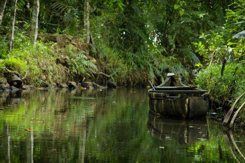 senoji valtis,vanduo,žalias,gabenimas,medinė valtis,valtis,kerala valtis,natūralus,lauke,peizažas,tradicinė valtis,gamta