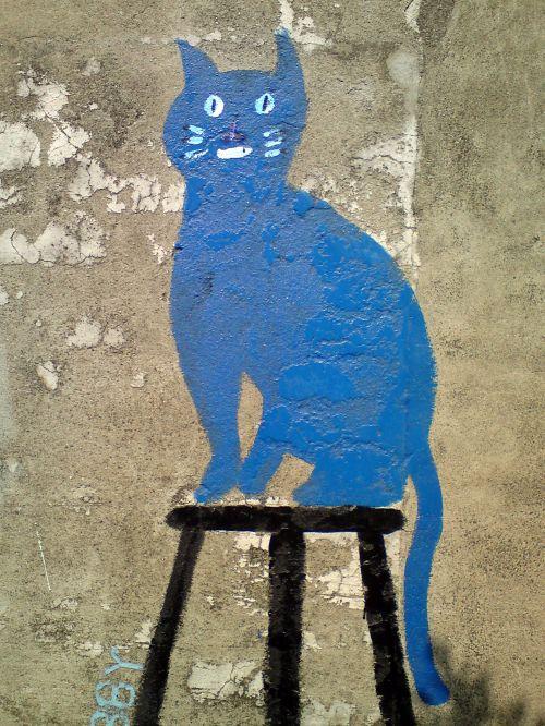 mėlynas, katė, bendruomenė, Kaohsiung, siena, dažymas, senoji bendruomenė