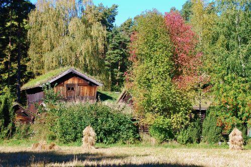 senas ūkis,tvartas,rąstinis namas,kaimiškas,ūkis,kaimas,Šalis