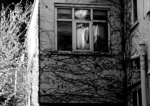senas & nbsp, baisus & nbsp, baisus & nbsp, namas, baugus, creepy, apsėstas, namas, Haunted & nbsp, namas, vaiduoklis, vaiduoklis, vaiduoklis, Halloween, bauginantis, išsigandęs, viešasis & nbsp, domenas, viešieji & nbsp, domeno & nbsp, vaizdai, senas baisus creepy namas