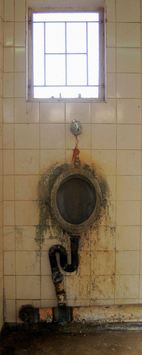 vonia, plytelės, pisuaras, rūdys, pelėsiai, defektas, senas pisuaras