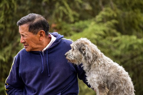Vyresni,  Šuo,  Vyras Su Šunimi,  Pet Su Savo Šeimininko
