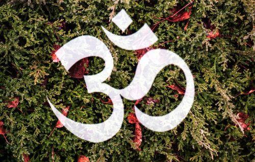 om,om mani padme hum,namaste,malda,religija,budizmas,Mantra,himalaja,tibetietis,religinis,palaiminimas,simbolis,ratas,buda,tibetas,Indija,melstis,tradicinis,šventas,dvasinis,meditacija,budistinis