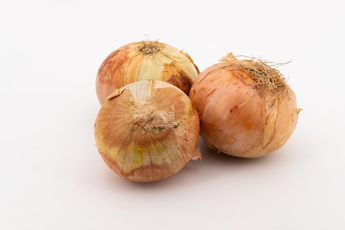 svogūnai, daržovių svogūnai, daržovės, svogūnai, Bolle, zipolle, kremas svogūnai, virtuvės svogūnai, gartenzwiebel, sommerzwiebel, namo svogūnai, bendroji svogūnai, sveiki, vitaminai, maisto, mitybos, Allium cepa, porai, Allium