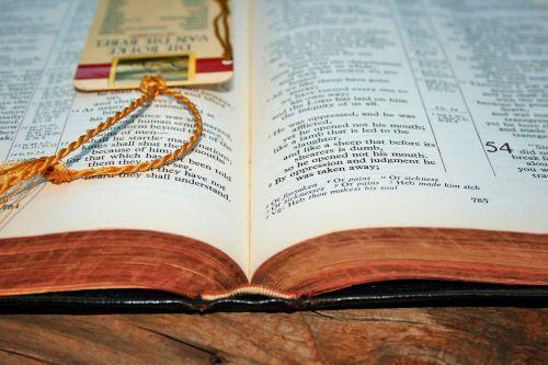 Biblija, atviras, tekstas, skaityti, atviras bible