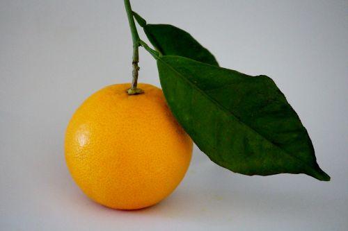 oranžinė,filialas,vitamino C,vaisiai,sveikas