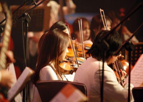 orkestras,muzika,orkestras devynias minutes,ansamblis,grojo,didelė juosta,Rodyti,instrumentas,koncertas,smuikas,styginiai instrumentai