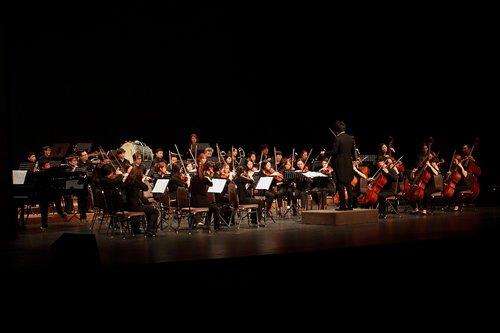 orkestras, Becej viešbutis orkestras, filharmonija, muzika, klasikinis