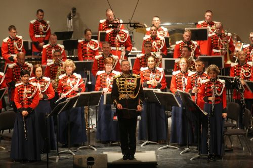 orkestras,karinis orkestras,spektaklis,muzika,instrumentas,koncertas,uniforma,grupė,muzikantai,įvykis