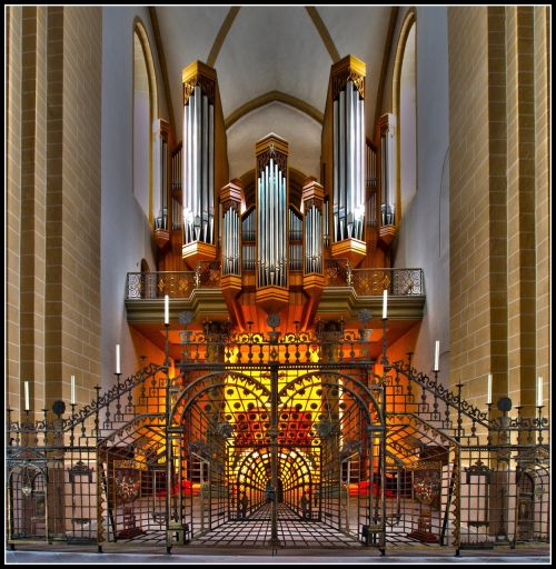 organas,Dom,Paderbornas,tinklelis,bažnytinis organas,organų švilpukas,instrumentas,pagrindinis organas,vyskupų bažnyčia