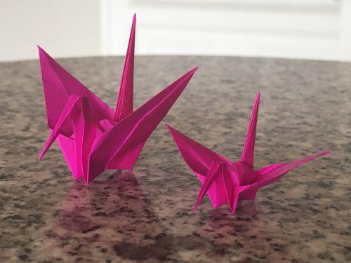 origami,bogota,Kolumbija