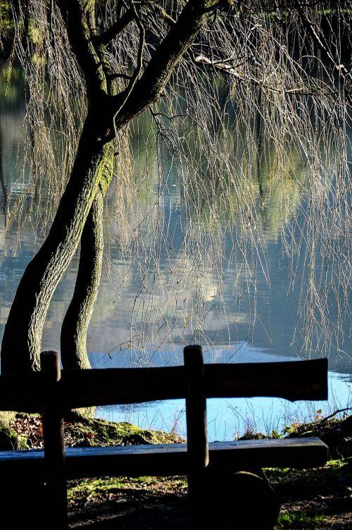 Origlio, Ežeras, Gamta, Šveicarija, Ticino