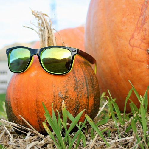 dekoratyviniai moliūgai,akiniai,ruduo,auginimas,Halloween,moliūgai,sodas,oranžinė,Spalio mėn,daržovės,apelsinų moliūgai