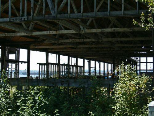 laisvas, deserti, sandėlis, architektūra, kranto, nusidėvėjęs, sijos, statramsčiai, sistema, rėmas, Vankuveris, užaugo, North Vancouver, dykuma, nemokamas & nbsp, vaizdas, nemokama & nbsp, nemokama, nemokama & nbsp, fotografija, užaugęs laisvas tuščias pastatas