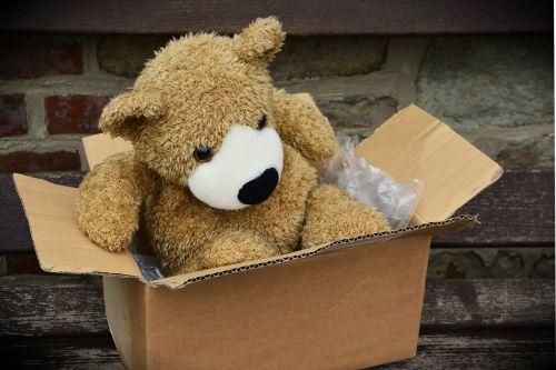 paketas,pagamintas,pakavimas,siųsti,Kartoninė dėžutė,kartonas,laivyba,meškiukas,Teddy,minkštas žaislas,neša,iškamša