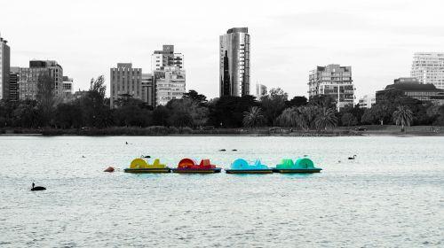 valtys,ežeras,buriuotojas,irklas,valtis,miestas,juoda ir balta,Alberto parkas,Melburnas,australia,vanduo,spalva pop,spalva,geltona,raudona,spalva,spalvos,mėlynas,žalias