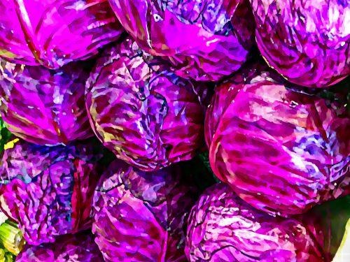 kopūstai, kopūstai, raudona & nbsp, kopūstai, daržovių, daržovės, žalias, maistas, sveikas, mityba, dažytos, meno, dažyti raudoni kopūstai