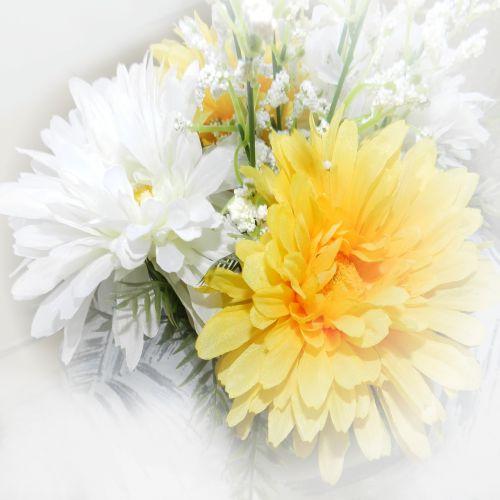 popierius,fonas,Scrapbooking,gėlės,geltona,balta,gamta,augalas,pavasaris