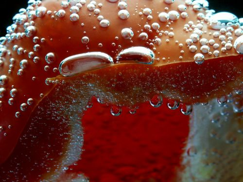paprika,raudona,oro burbuliukai,blubber,smūgis,vanduo,makro