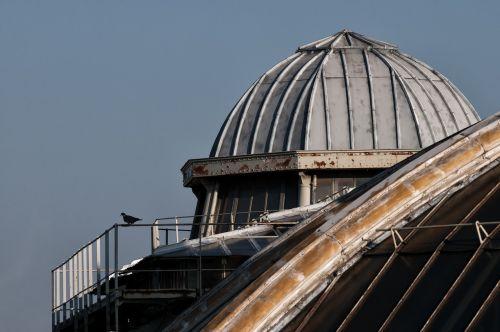 paris,stogai,židiniai,turizmas,paris opera,kupolas,france