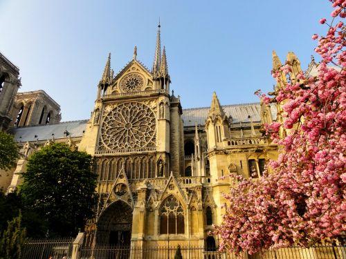 paris,notre dame de paris,garbinimo namai,pastatas,architektūra,fasadas
