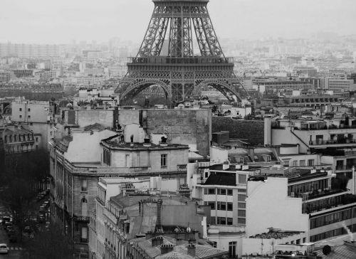 miestas, stogai, eifelis, bokštas, paris, miesto panorama, paris roofs