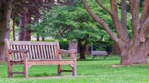 parko suoliukas, bankas, mediena, medis, Sodas, sėdynė, poilsio, sodo suoliukas, suolai, Kurpark, poilsio pauzė, iš, atsigavimas