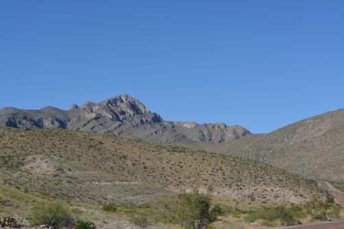 kaktusas, franklin, kalnai, valstybė, parkas, usa, amerikietis, texas, smėlis, kaktusas, yucca, augalas, dykuma, texas, parkas, žalias, daugiametis, krūmai, medžiai, parkas texas kalnų vienišas žvaigždė narė