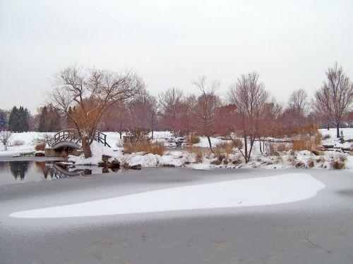sušaldyta, tvenkinys, ledas, žiema, medžiai, sniegas, tiltas, iš dalies užšaldytas tvenkinys