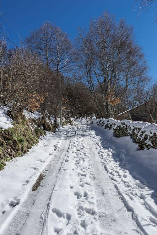 kelias,sniegas,nevado,žiema,kraštovaizdis,gamta,Nevada,kalnas,snieguotas kelias,šaltas,ledas,snieguotas kraštovaizdis,kalnų kelias,kalnų peizažas,balta,kaimo kelias,vaikščioti,medžiai,alpinizmas,taikus