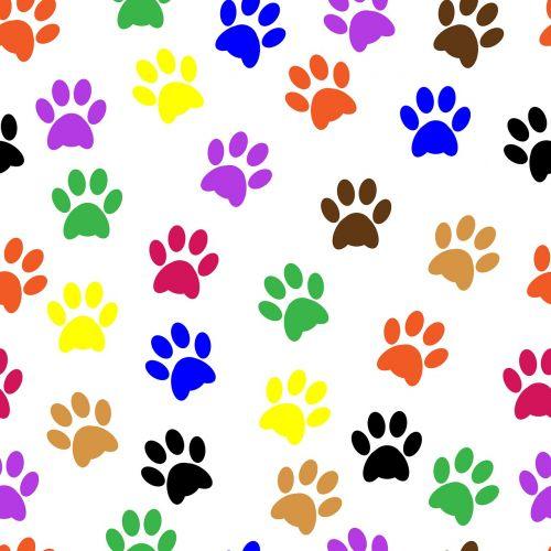 letenų žymės,letenų žymės,paw,gyvūnas,naminis gyvūnėlis,šuo,dizainas,pėdsakas,trasa,spausdinti,Paties spausdinimas,katė,piktograma,modelis,figūra,simbolis,ženklas,balta,šunys,tapetai,popierius,fonas,fonas,spalvinga,mėlynas,oranžinė,rožinis,geltona,žalias,juoda,Scrapbooking,iškarpų albumas,menas,takas,mielas