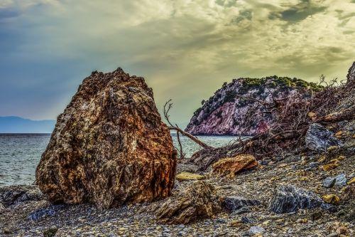 žvyro paplūdimys,laukiniai,Rokas,kritęs medis,griuvėsiai,papludimys,gamta,jūra,kranto,kraštovaizdis,popietė,velanio paplūdimys,skopelos,Graikija