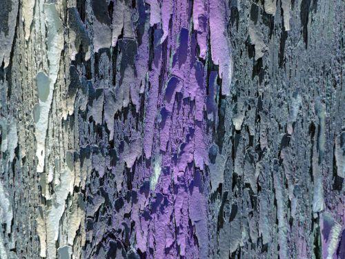 fonas, tapetai, lupimas & nbsp, dažai, žievelės, lupimasis, dažyti, skilimas, senas, pablogėja, violetinė, tekstūra, modelis, lupimasis dažų fonas