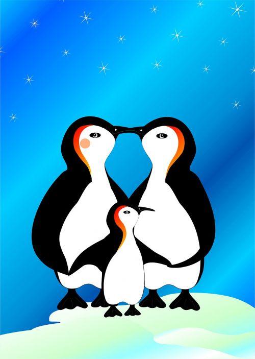 pingvinas,šeima,vandens paukštis,gyvūnas,antarctica,Pietų ašigalis,pol,arktinis apskritimas,šaltas,ledas,ledinis,sniegas,žiema,Ledo šaltumo,naktis,žvaigždė,žvaigždė naktį,naktinis dangus,spindesys,šviesa,spinduliai,atmosfera,nuotaika,bučinys,meilė,tėvas,motina,vaikas,tėvai,sparnas,krūvos,laimingas,kartu,bendruomenė,saugumas,atsigavo,tėvo laimė,mutterglück,apsauga,apsaugoti,intymūs,intymumas,širdis,apkabinti,apimti,laikytis kartu,pasakos,pasaka,fantazija,fantastinis,misticizmas,mistinis,stebuklinga,spalvingas,mielas,saldus,vaikystę,žemėlapis,atvirukas,fonas,Gimdymas,gimtadienio kortele,pakvietimas,vaikų gimtadienis,žiemos laikas,Kalėdų laikas,Kalėdos,žiemą,pasitikėjimas,artumas,mylėti laimę,šeimos laimė,Valentino diena,įsitraukimas,pasipiršimas