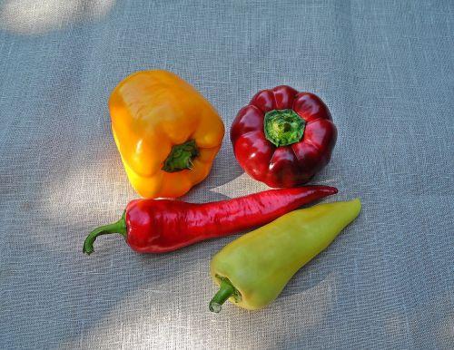 pipirai,daržovės,raudona,geltona,maistas,augalas,šviežias,ekologiškos daržovės,be cheminių medžiagų,vegetariškas,sveikas