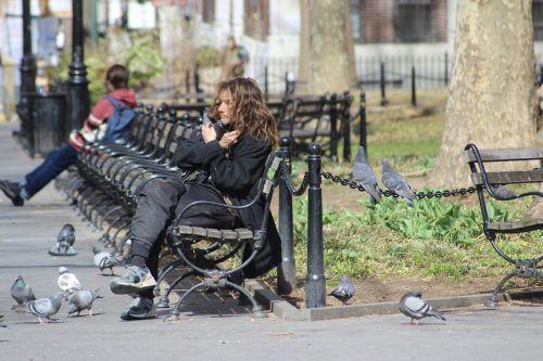 asmuo,paukštis,paukščiai,parkas,Niujorkas,benamiai,gyvūnų mėgėjai,apkabinimas