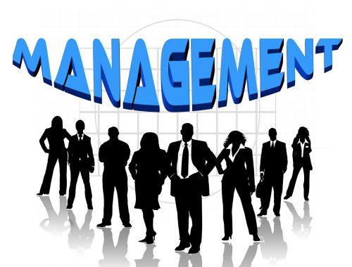 Asmeninis,grupė,siluetai,vyras,moteris,akcinė bendrovė,fondas,organizacija,bendrovė,direktoratas,direktorių taryba,taisyklė,komanda,kontrolė,vairavimas,valdymas,priežiūra,lazdelė,galia,direktorius,puiku,kėdė,vadovavimas,nuotykis,verslo įmonės,verslo klientai,stengtis,pasiūlymas,vienetas,užduotis,komandinis darbas,komanda,finansai,verslas,metinis pranešimas,balanso lapas,statistika,bendradarbiauti,koorparativ,žmogus,žmonių grupė,kartu,grupinis darbas,bendruomenė,bendradarbiavimas,sėkmė