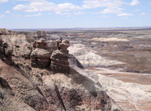 apleistas miško nacionalinis parkas,nusmukęs,fosilijos,Nacionalinis parkas,amerikietis,gamta,kraštovaizdis,usa,Arizona,araucarioxylon arizonicum,dykumos kraštovaizdis,apleisti medžiai,nusmukęs medis