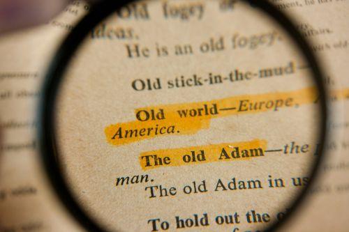 frazės,padidintas,žodynas,tekstas,Paiešką,Paieška,rasti,frazė,objektyvas,padidinti